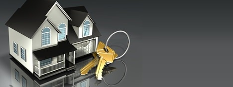 Real Estate Budget 2011