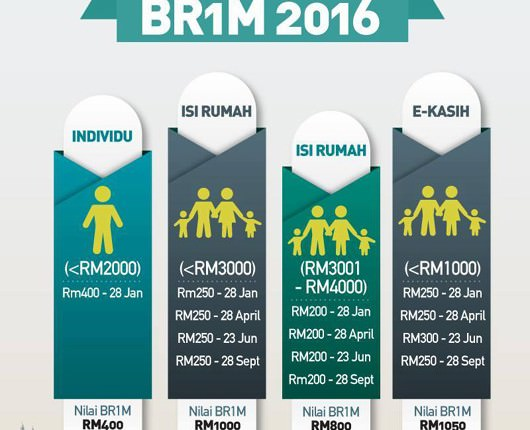 BR1M2016