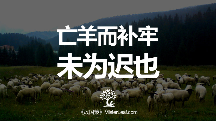 亡羊而补牢,未为迟也