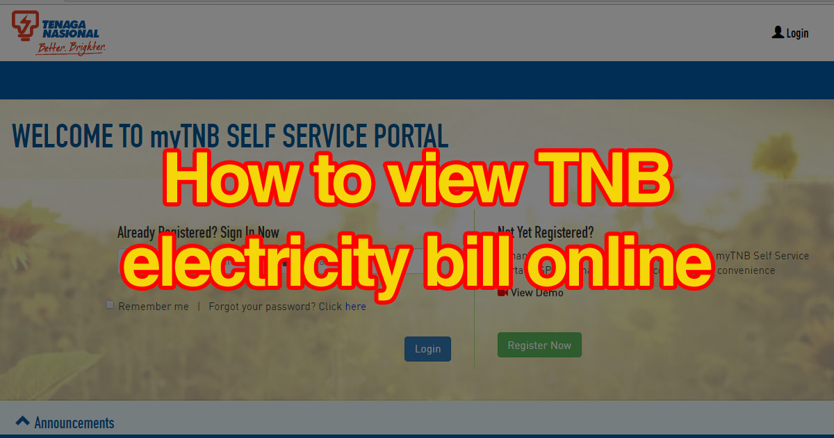 How to view TNB electricity bill online? | MisterLeaf
