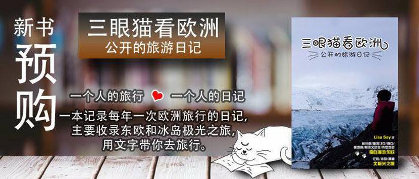 LisaSay Book